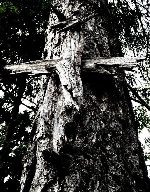 Kreuz Dolomiten Berg Holz + croce montagne Dolomiti legno + cross dolomite mountain wood