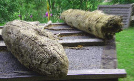 questo non è il museo Corones MMM di Rainhold Messner ma il museo bunker Plan de Corones