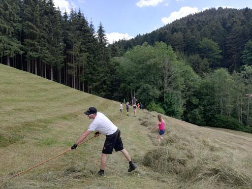 Im Holzwald bei Eumel und Carina