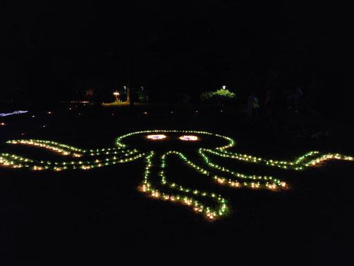 Die Krake im Dämmerlicht