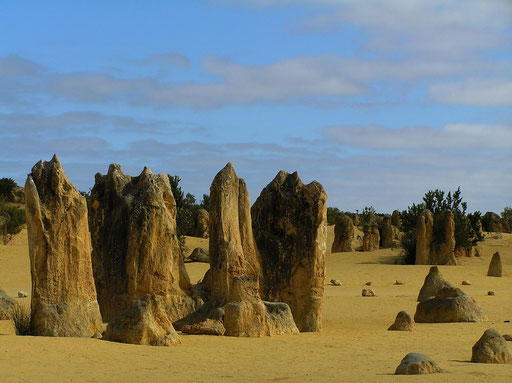 Es sind rund 150.000 bizarr geformte Kalksteinsäulen, die von wenigen Zentimetern bis zu 5 m hoch sind.