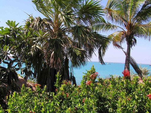 Wirtschaftliche Haupteinnahmequelle ist aber heute der Tourismus. Während der Hochsaison leben in Broome ca. 30.000 Einwohner, normalerweise sind es ca. 14.000 Menschen.