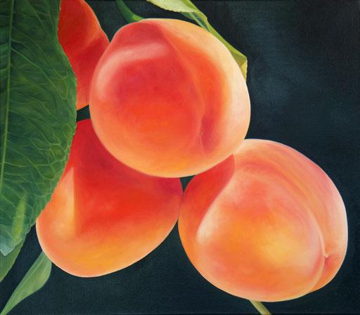 <b>Aprikosen</b><br>Öl/Leinwand | 2013 | 70 x 80 cm