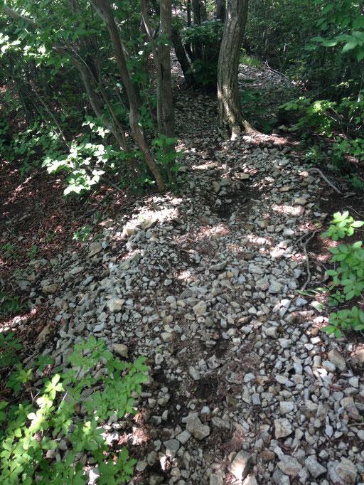 登山道には山郭の砂利が轢かれてました。