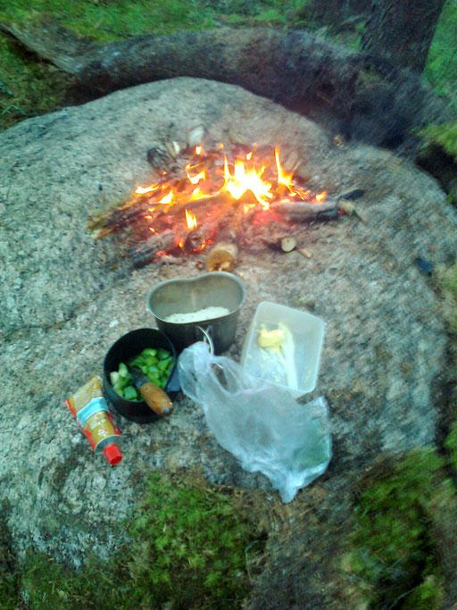 ...außerdem habe ich Reis, Knoblauch, Butter und ein paar Kräuter im Gepäck