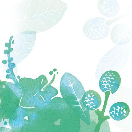 © Illustration für amo como soy im Auftrag von Dittus Design | Packaging Design & Branding