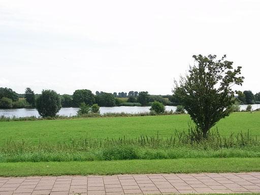 Die Maas bei Maashees
