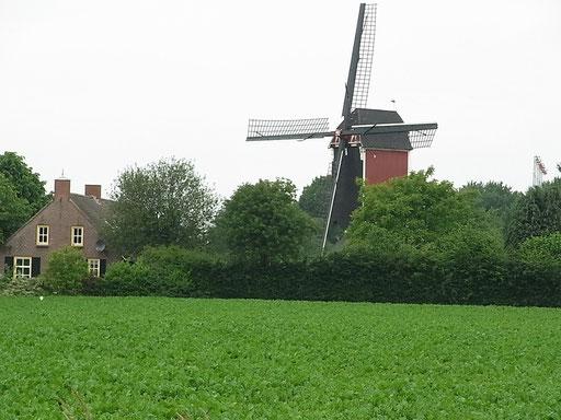 Mühle bei Someren-Eind