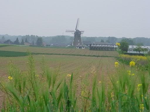 Haarener Mühle