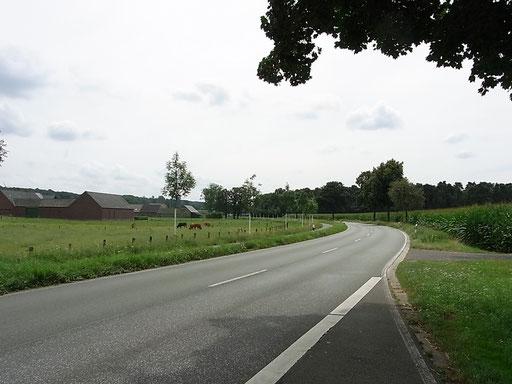 Straße Richtung Herongen