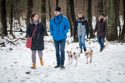 Cassy bi de Uihlenstraat, Kaja vom Strithorst & Amira von den Riede-Auen