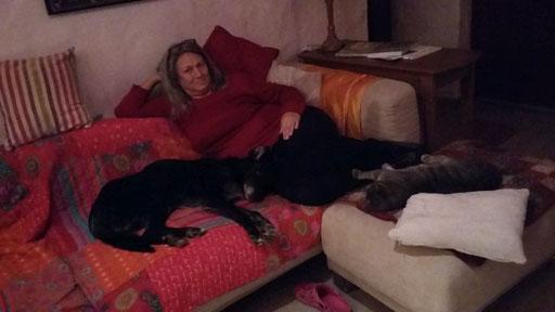 Die Kuscheltruppe: Angela mit Luke und Grizzly