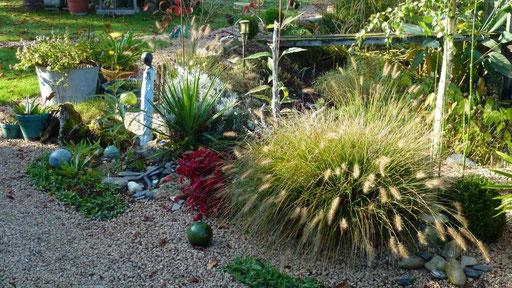 Der von Regine aufgeräumte Steingarten