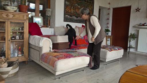 Amir untersucht die Katzenbox - die Katzen sind aber in meinem Schlafzimmer - puh