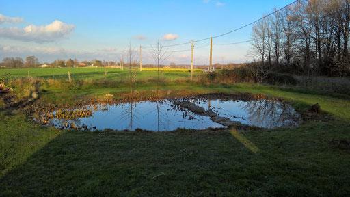 Der kleine Teich danach: fix-fertig und parat für ein neues Jahr