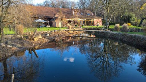 Blick über den Teich