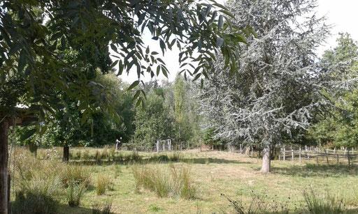 Im Garten von Gérald und Georg