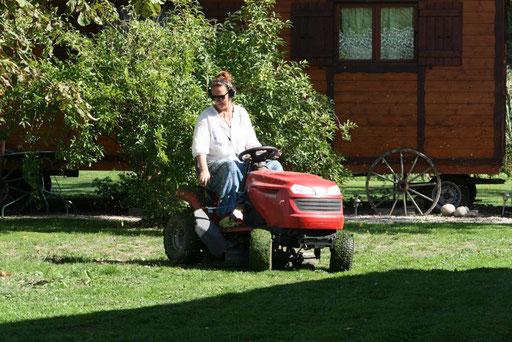 Rasenmähen muss auch immer wieder sein