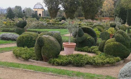 Lustige Buchsfiguren im Lustgarten von Chateau Cormatin