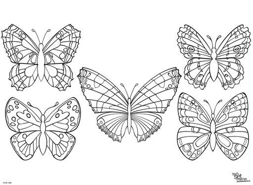 """Wunderschöne Schmetterlinge"" SKU: 16_20_1_002"