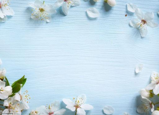 """Apfelblüten auf blauem Holz"" SKU: 19_06_116"