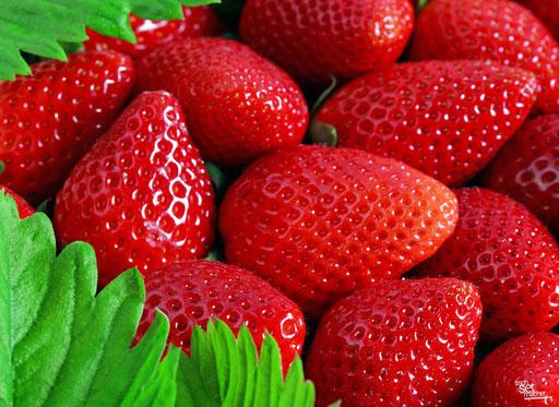 """""""Knallrote Erdbeeren mit grünen Blättern"""" SKU: 16_58_009"""
