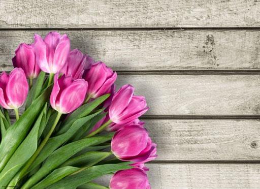 """Tulpen Pink"" SKU: 19_09_112"
