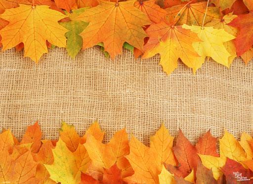 """Farbenfrohe Herbstblätter"" SKU: 16_15_020"