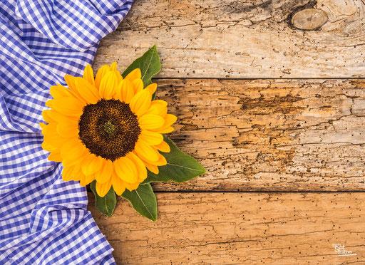 """""""Sonnenblume auf rustikalem Holztisch"""" SKU: 16_03_026"""