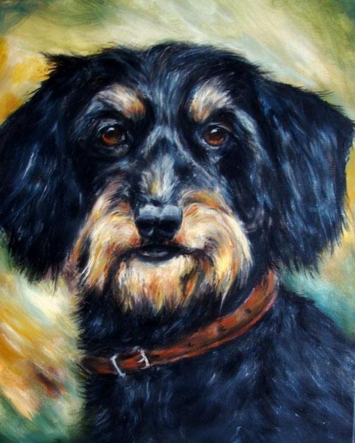 Hundeportrait  mit Acryl gemalt. Rauhaardackel