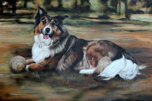 Collie mit Acryl gemalt