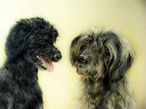 zwei Freunde, Hundeportraits