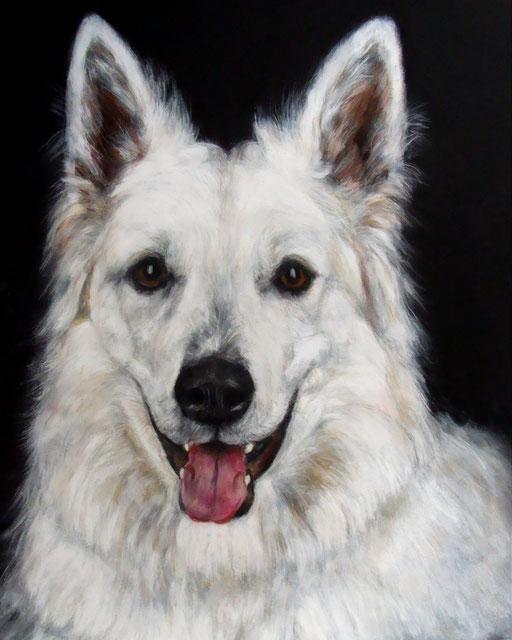 Weißer Schäferhund, Hund gemalt mit Acryl auf Karton