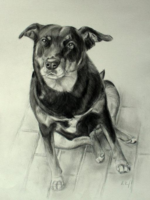 alter Hundeherr mit Bleistift und Kohle gezeichnet