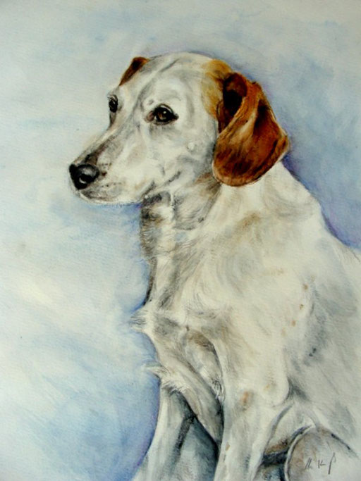 Hundebild, Aquarell