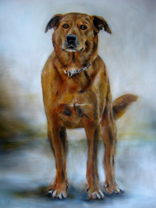Hundeportrait, Acryl
