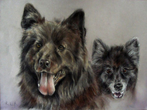 unterschiedliche Hundefreunde, Hundezeichnung