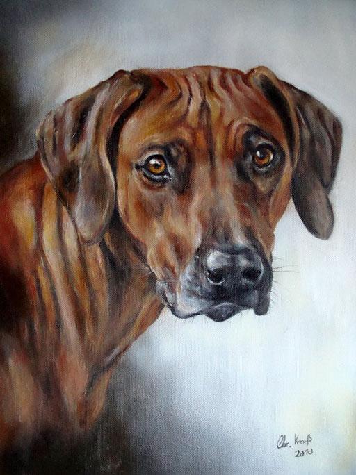 Hund gemalt, Rhodesian Ridgeback, Acryl auf Leinwand
