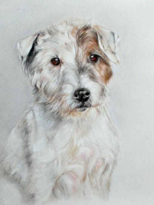 Hundezeichnung, Pastell