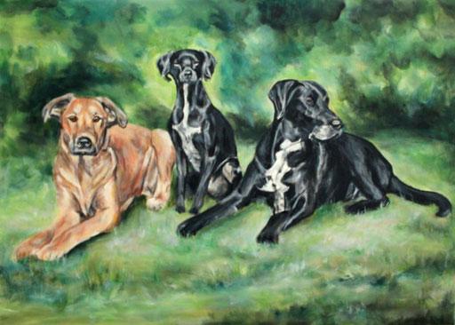 Hundeportraits mit Acryl gemalt