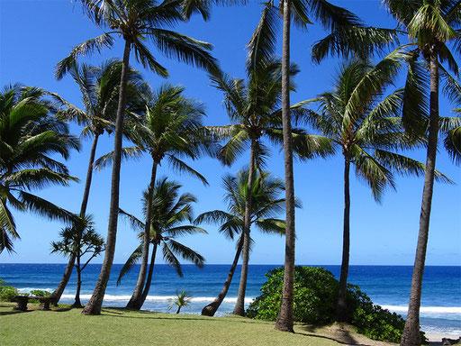 Plage de Grand-Anse