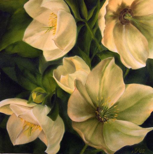 Christrosen, 50 x 50 cm, Öl/Leinwand