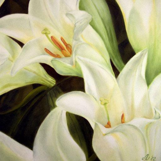 Lilien, 50 x 50 cm, Öl/Leinwand