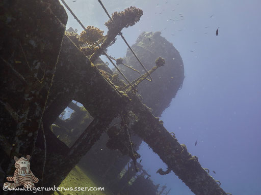 Ghiannis D / Abu Nuhas - Red Sea / Aquarius Diving Club