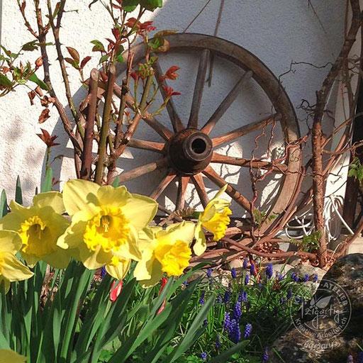 Wagenrad mit Frühlingsblumen im Garten, © www.kreativearbeiten.ch