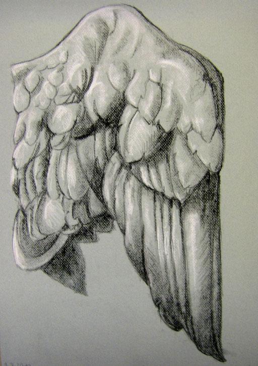 Kohle und Kreide auf Graupapier 50 x 70 cm
