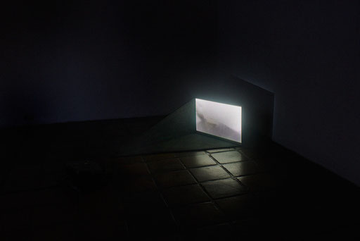 Ilich Castillo - Poner una carne en palito bajo la sombra de un edificio para que los ladrones no la vean - La Limpia Videos