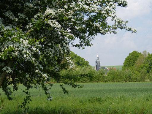 Notre Dame de Moyenpont et la Voie Verte