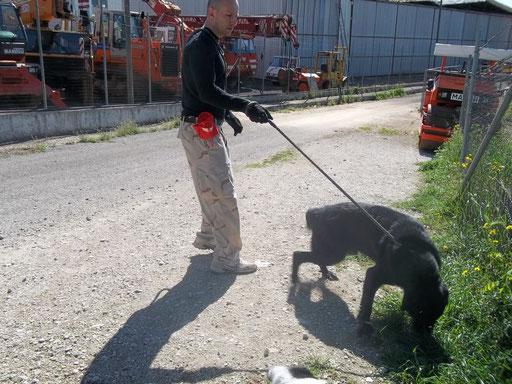 con ORAZIO mentre faccio volontariato presso il RIFUGIO PARRELLI