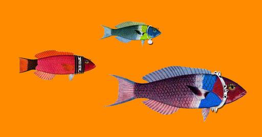 Création d'infographies et illustrations, Bijoutier Marc Deloche